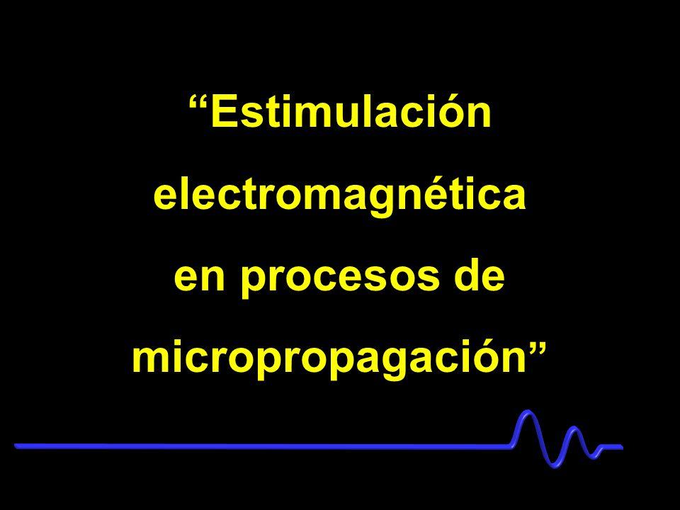 en procesos de micropropagación