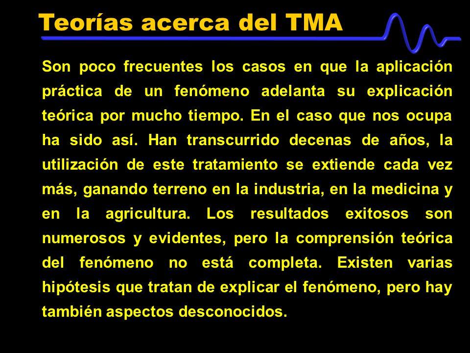 Teorías acerca del TMA