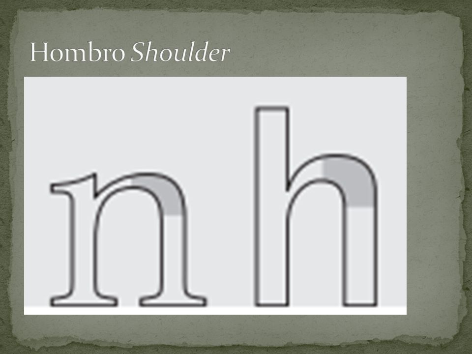 Hombro Shoulder