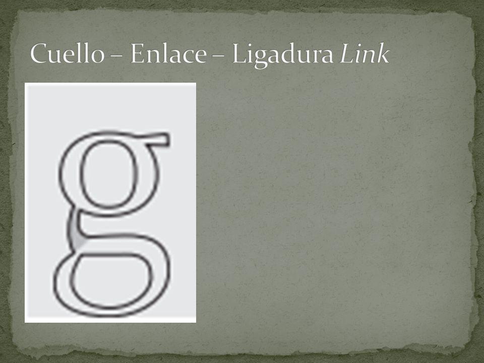 Cuello – Enlace – Ligadura Link