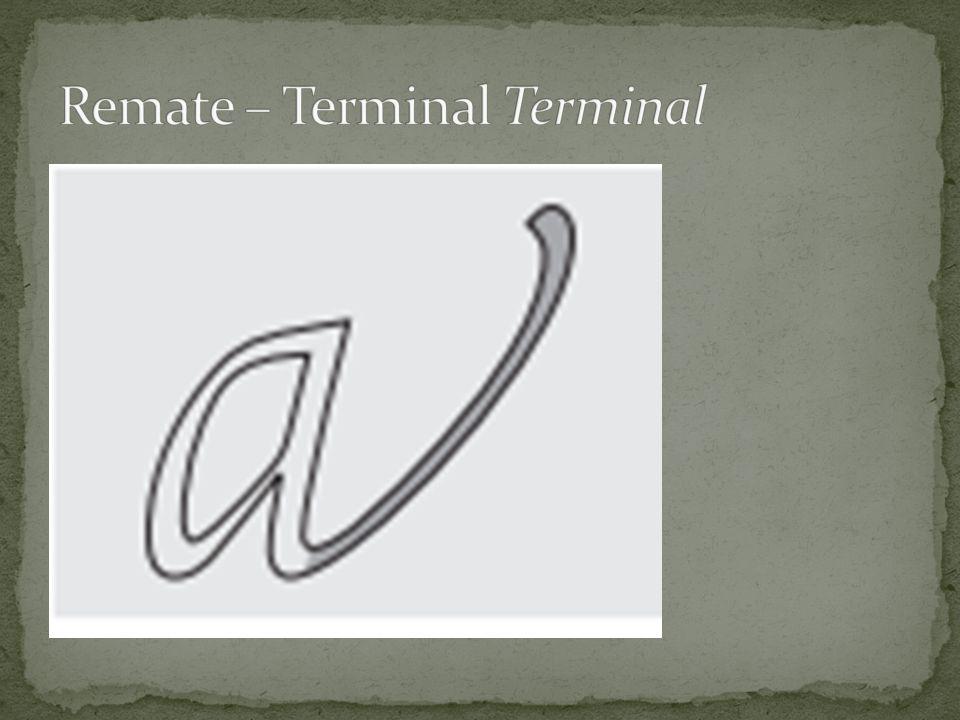 Remate – Terminal Terminal