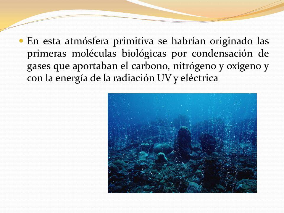 En esta atmósfera primitiva se habrían originado las primeras moléculas biológicas por condensación de gases que aportaban el carbono, nitrógeno y oxígeno y con la energía de la radiación UV y eléctrica