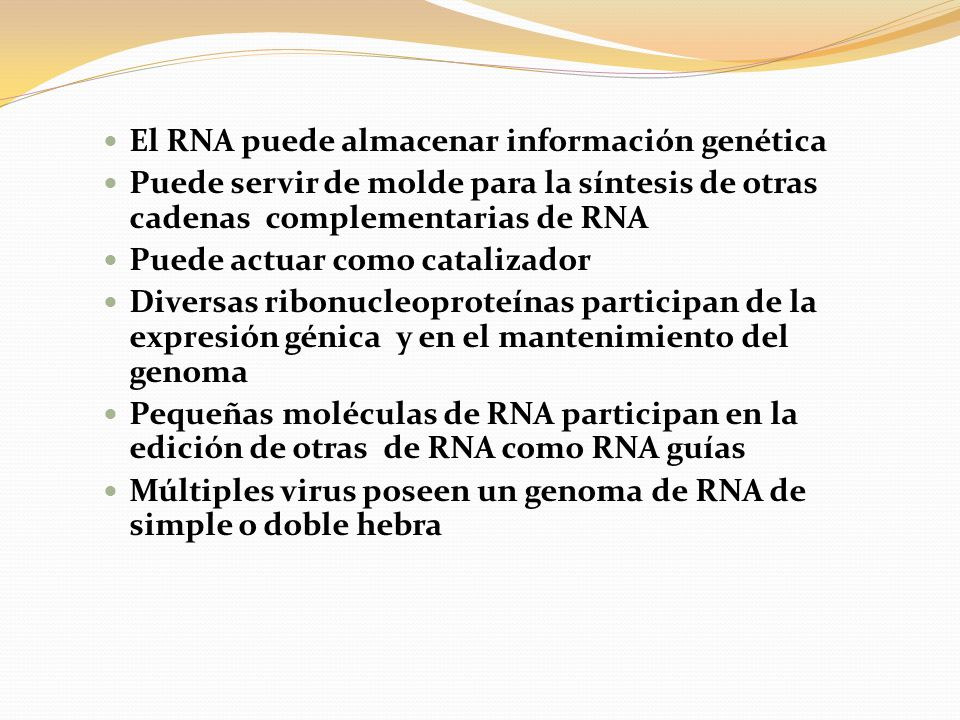 El RNA puede almacenar información genética