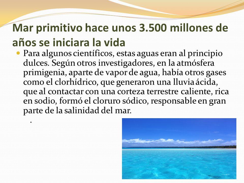 Mar primitivo hace unos 3.500 millones de años se iniciara la vida