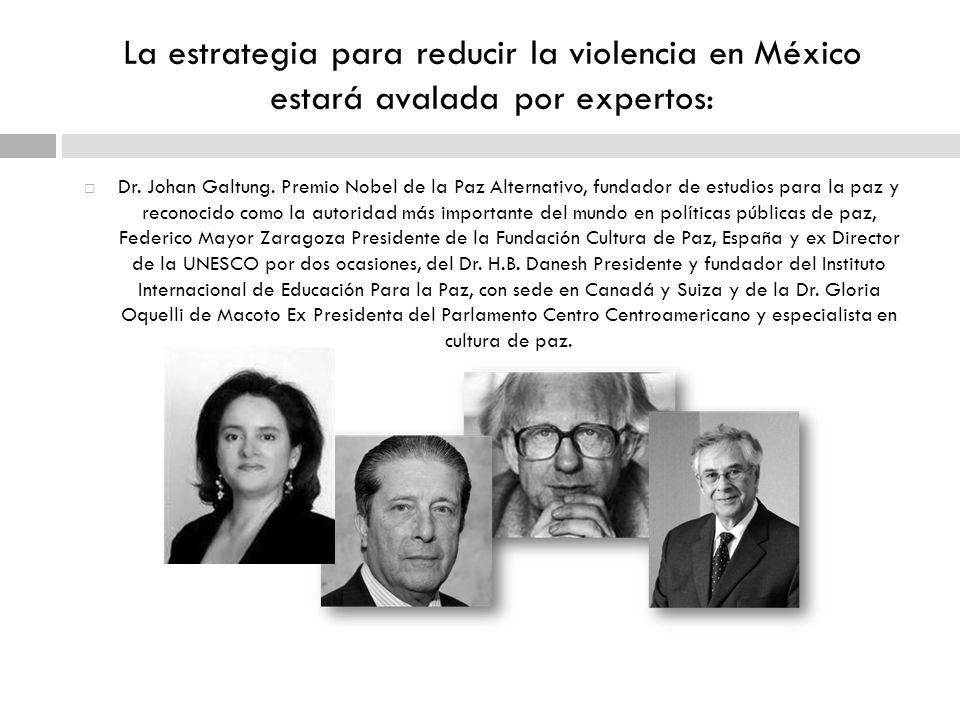 La estrategia para reducir la violencia en México estará avalada por expertos: