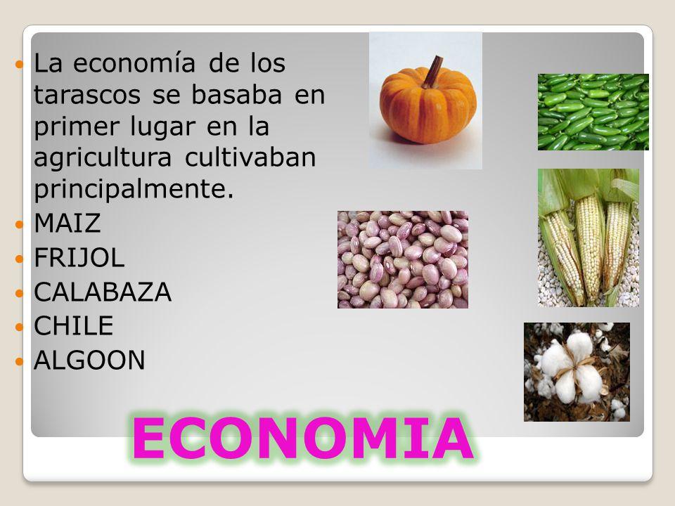 La economía de los tarascos se basaba en primer lugar en la agricultura cultivaban principalmente.