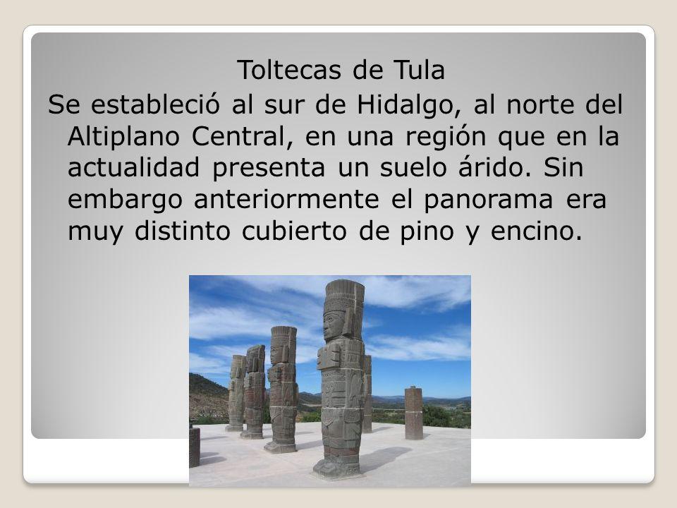 Toltecas de Tula Se estableció al sur de Hidalgo, al norte del Altiplano Central, en una región que en la actualidad presenta un suelo árido.