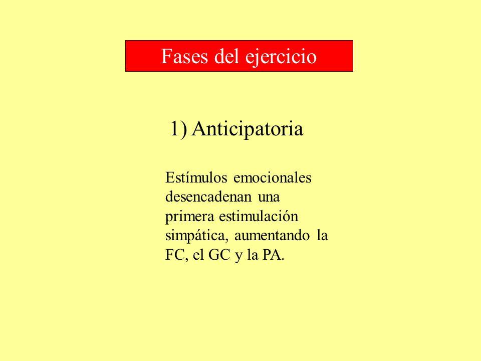 Fases del ejercicio 1) Anticipatoria