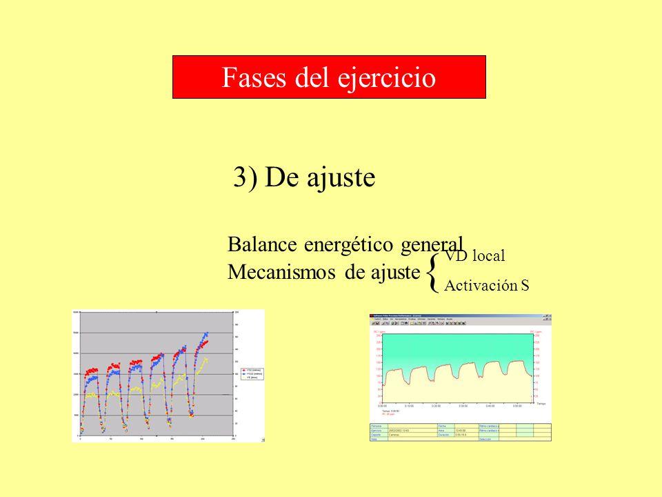 { Fases del ejercicio 3) De ajuste Balance energético general