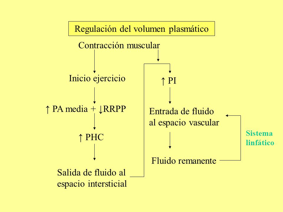 Regulación del volumen plasmático