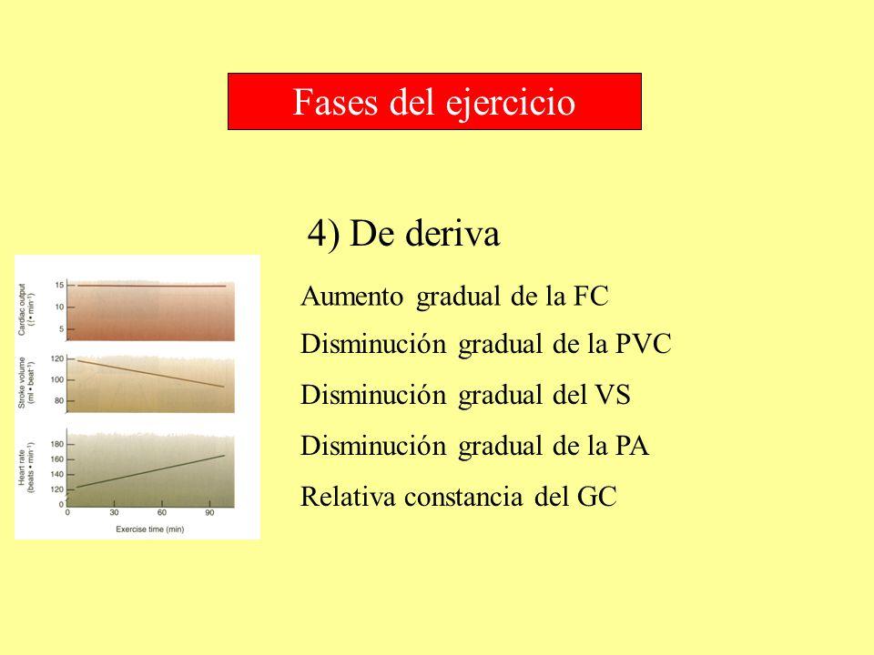 Fases del ejercicio 4) De deriva Aumento gradual de la FC
