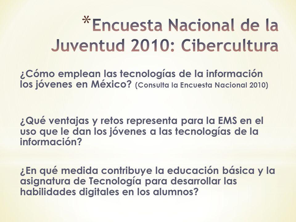 Encuesta Nacional de la Juventud 2010: Cibercultura