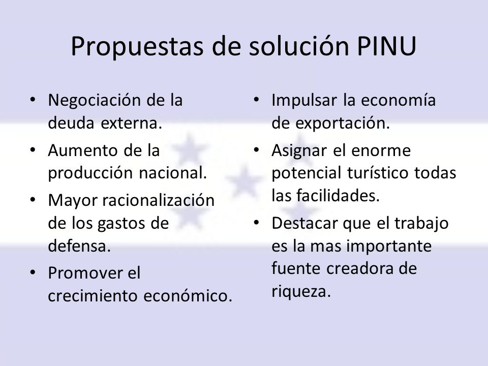 Propuestas de solución PINU
