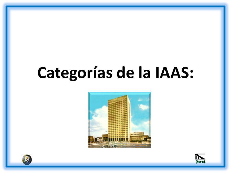 Categorías de la IAAS: