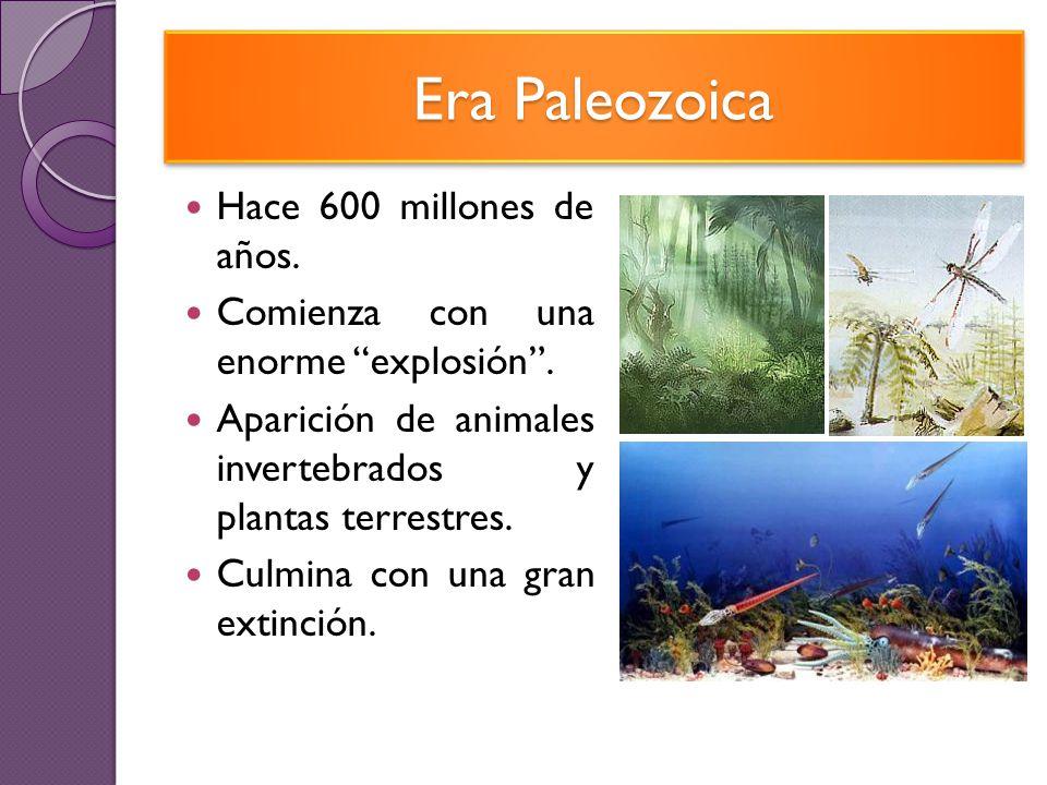 Era Paleozoica Hace 600 millones de años.