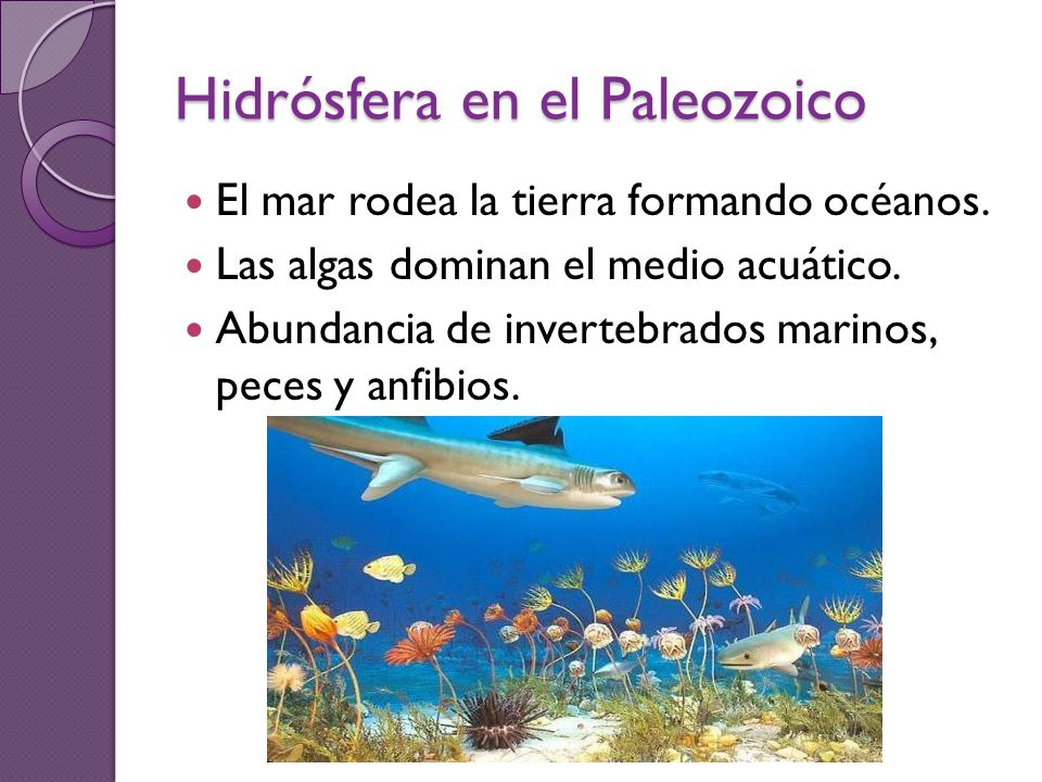 Hidrósfera en el Paleozoico