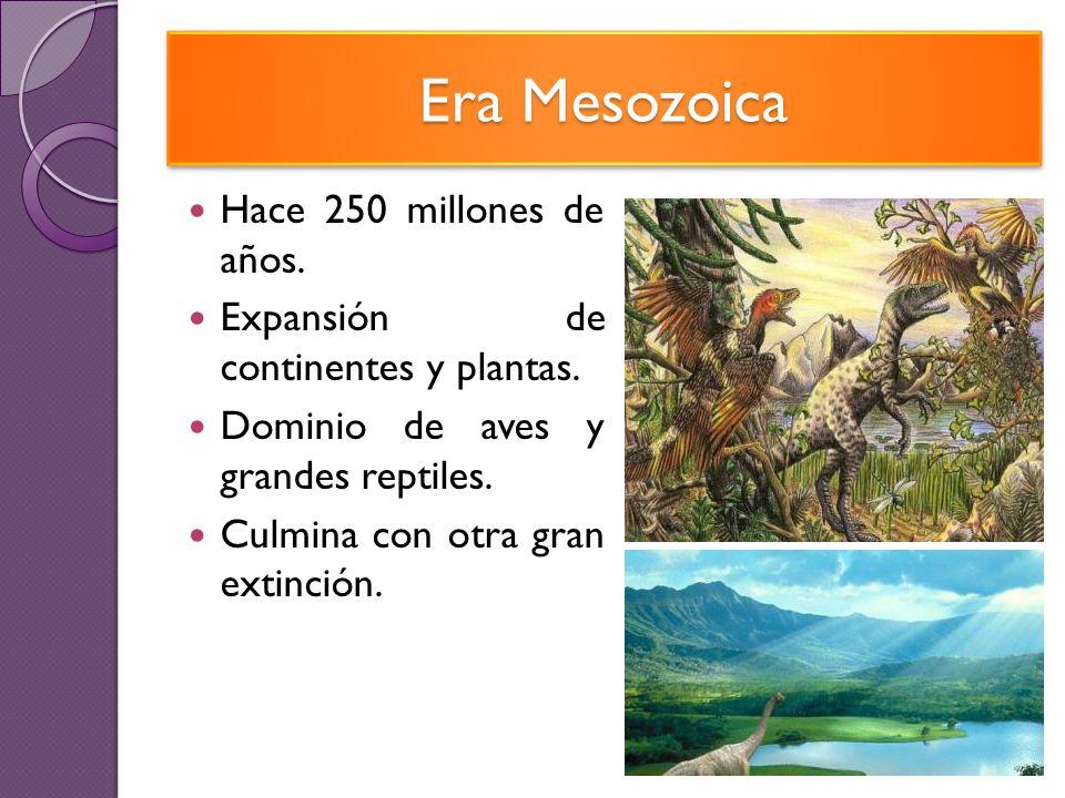 Era Mesozoica Hace 250 millones de años.