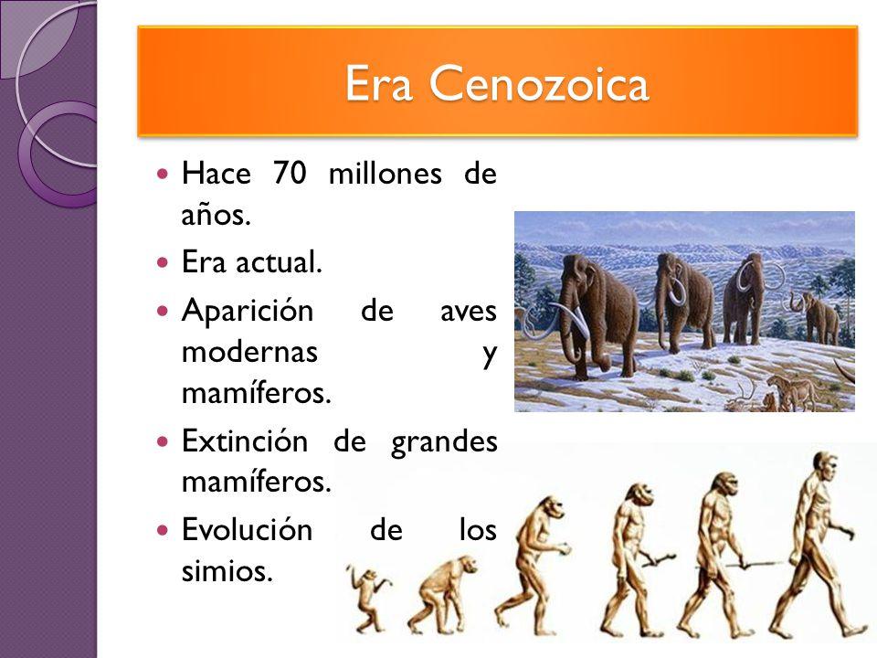 Era Cenozoica Hace 70 millones de años. Era actual.