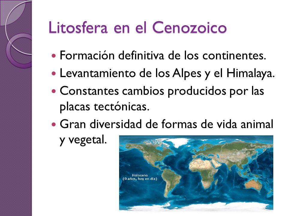 Litosfera en el Cenozoico