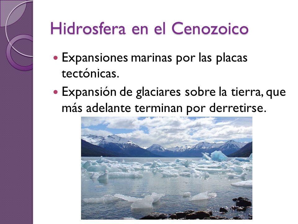 Hidrosfera en el Cenozoico