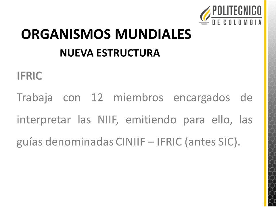 ORGANISMOS MUNDIALES IFRIC