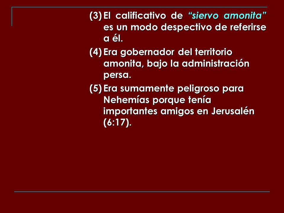 (3). El calificativo de siervo amonita