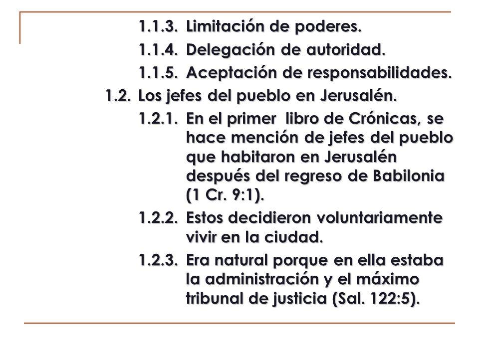 1.1.3. Limitación de poderes. 1.1.4. Delegación de autoridad. 1.1.5. Aceptación de responsabilidades.