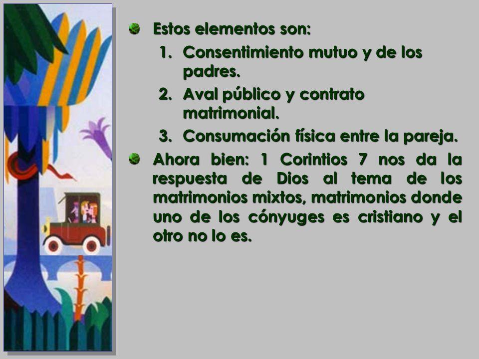 Estos elementos son:Consentimiento mutuo y de los padres. Aval público y contrato matrimonial. Consumación física entre la pareja.