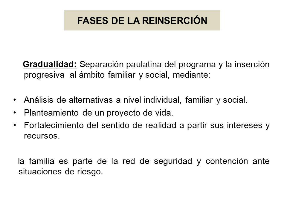 FASES DE LA REINSERCIÓN