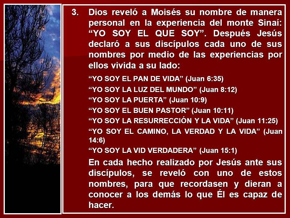 YO SOY EL PAN DE VIDA (Juan 6:35)