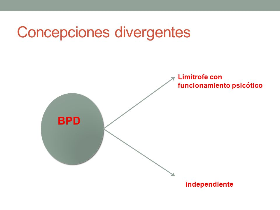 Concepciones divergentes