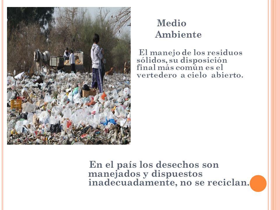 Medio Ambiente.