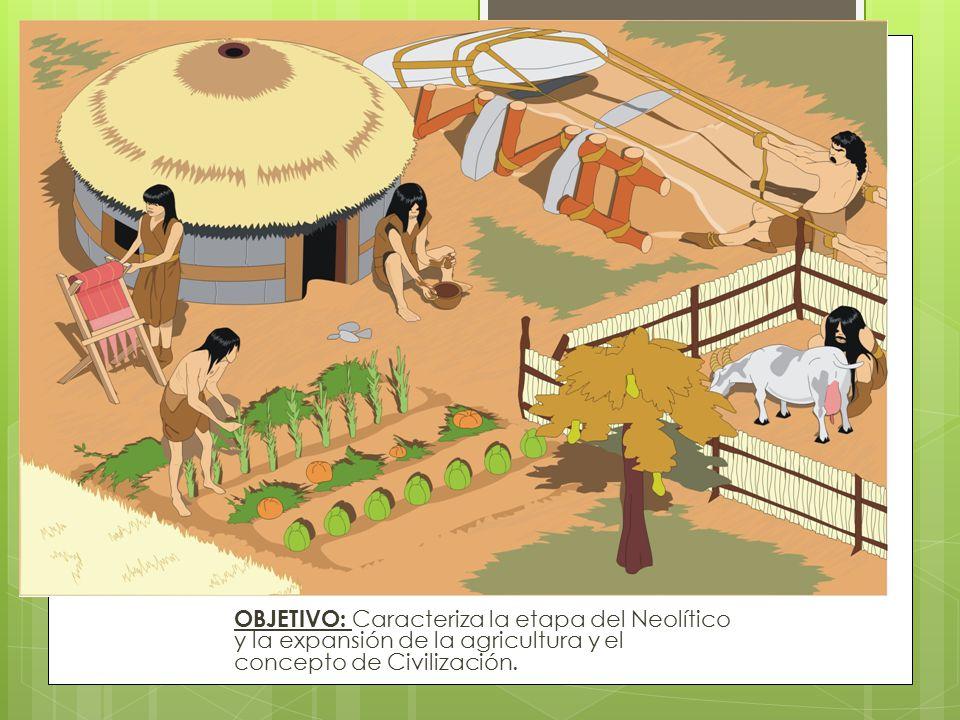 OBJETIVO: Caracteriza la etapa del Neolítico y la expansión de la agricultura y el concepto de Civilización.