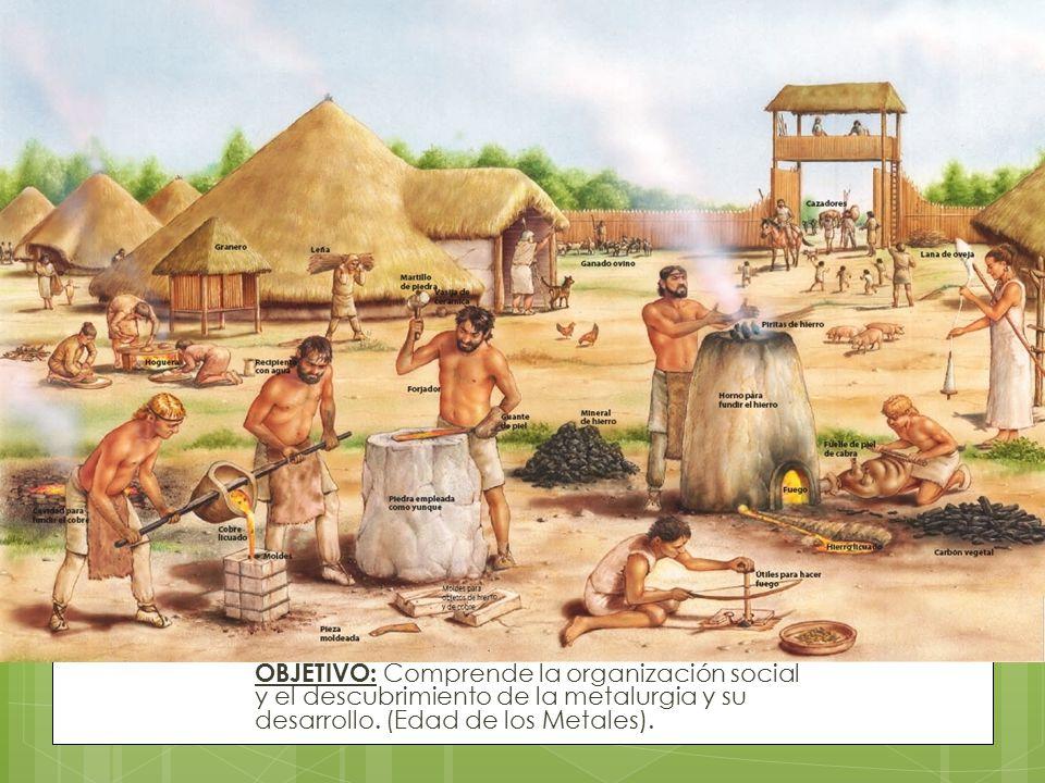 OBJETIVO: Comprende la organización social y el descubrimiento de la metalurgia y su desarrollo.