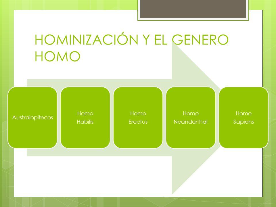 HOMINIZACIÓN Y EL GENERO HOMO