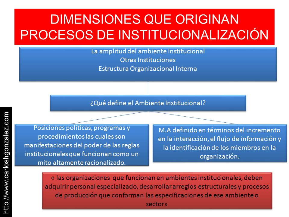 DIMENSIONES QUE ORIGINAN PROCESOS DE INSTITUCIONALIZACIÓN