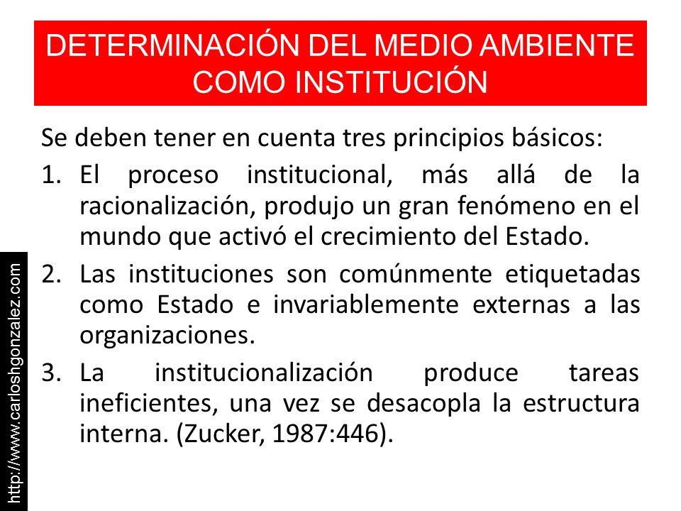 DETERMINACIÓN DEL MEDIO AMBIENTE COMO INSTITUCIÓN