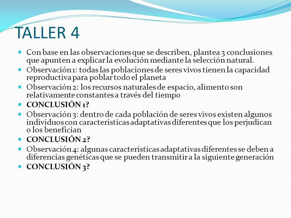 TALLER 4 Con base en las observaciones que se describen, plantea 3 conclusiones que apunten a explicar la evolución mediante la selección natural.