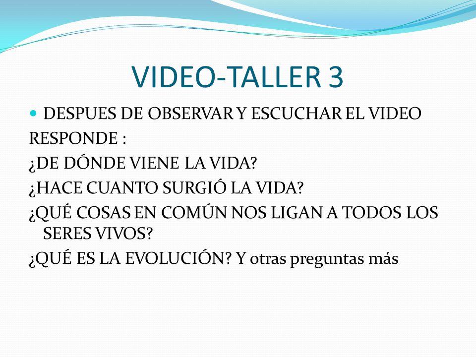 VIDEO-TALLER 3 DESPUES DE OBSERVAR Y ESCUCHAR EL VIDEO RESPONDE :