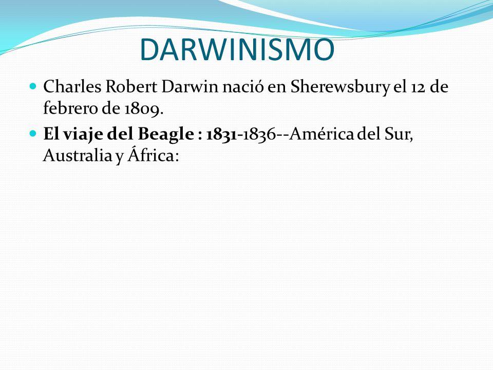 DARWINISMO Charles Robert Darwin nació en Sherewsbury el 12 de febrero de 1809.