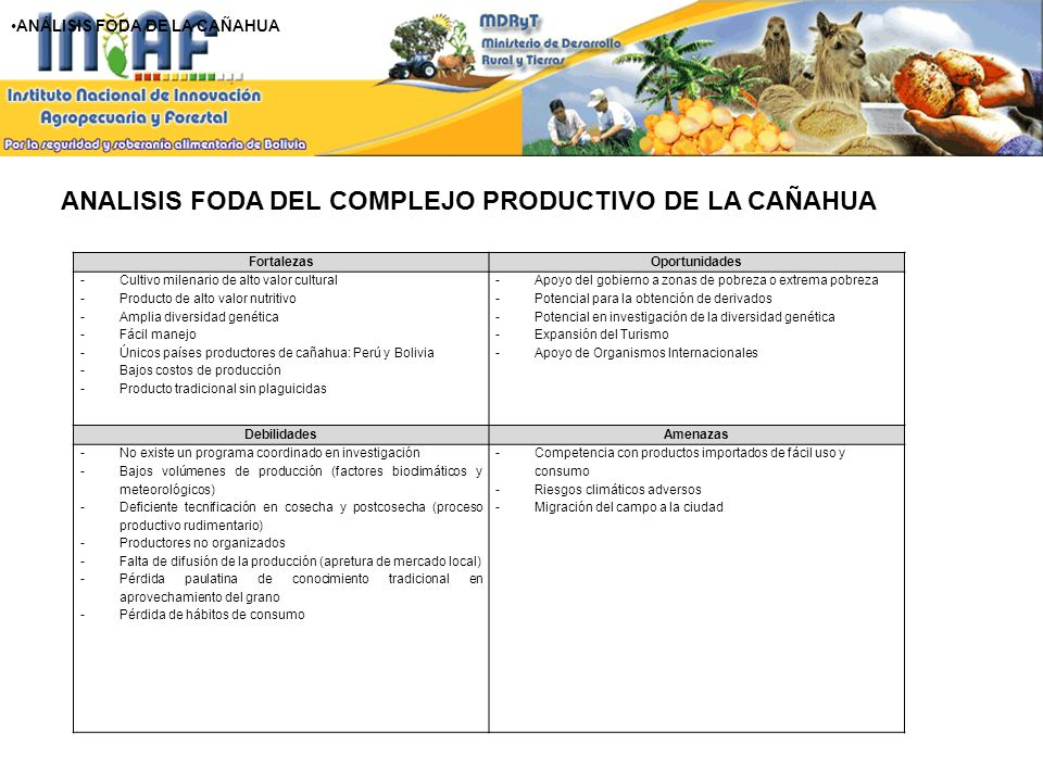 ANALISIS FODA DEL COMPLEJO PRODUCTIVO DE LA CAÑAHUA