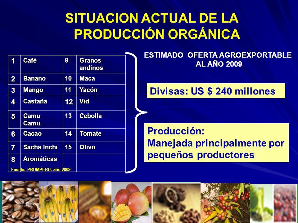 SITUACION ACTUAL DE LA PRODUCCIÓN ORGÁNICA