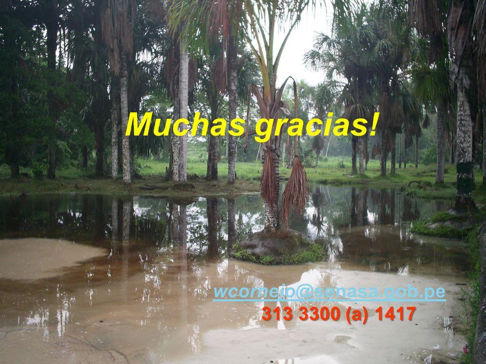 Muchas gracias! wcornejo@senasa.gob.pe 313 3300 (a) 1417