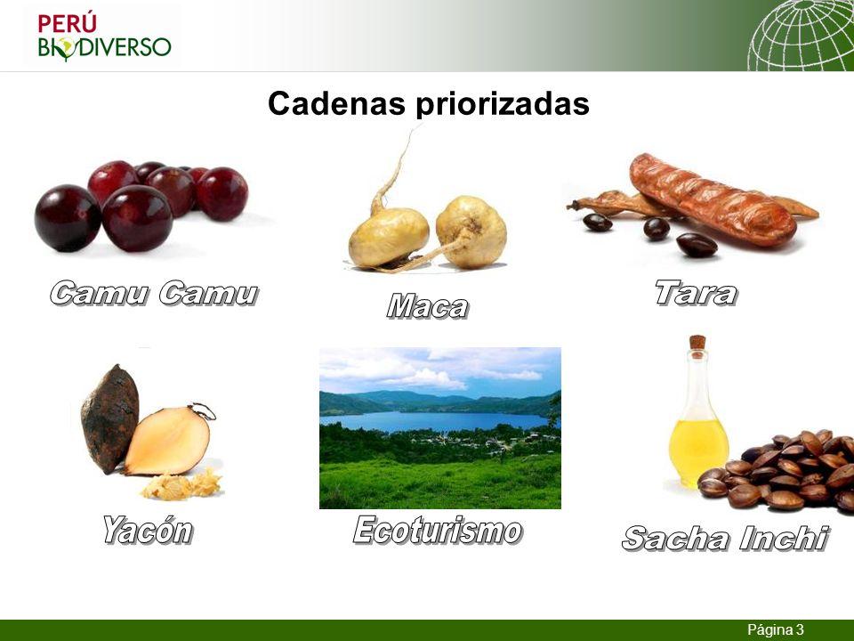 Cadenas priorizadas Camu Camu Tara Maca Yacón Ecoturismo Sacha Inchi