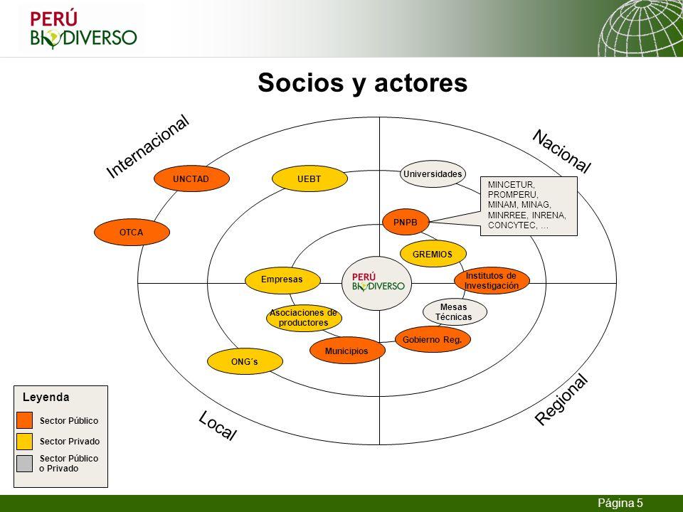 Institutos de Investigación Asociaciones de productores