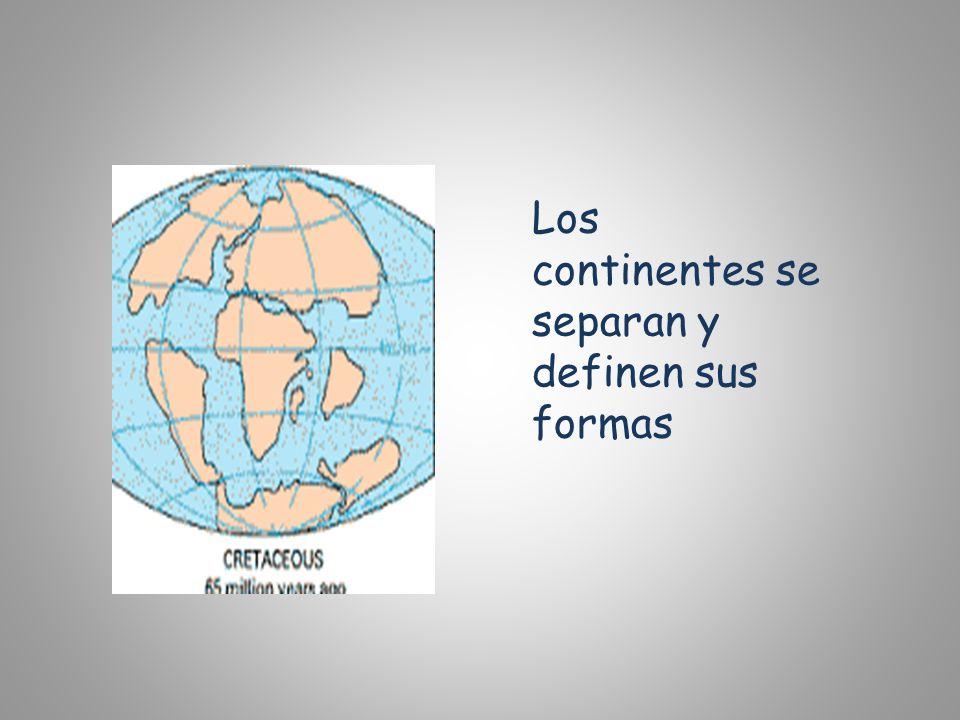 Los continentes se separan y definen sus formas