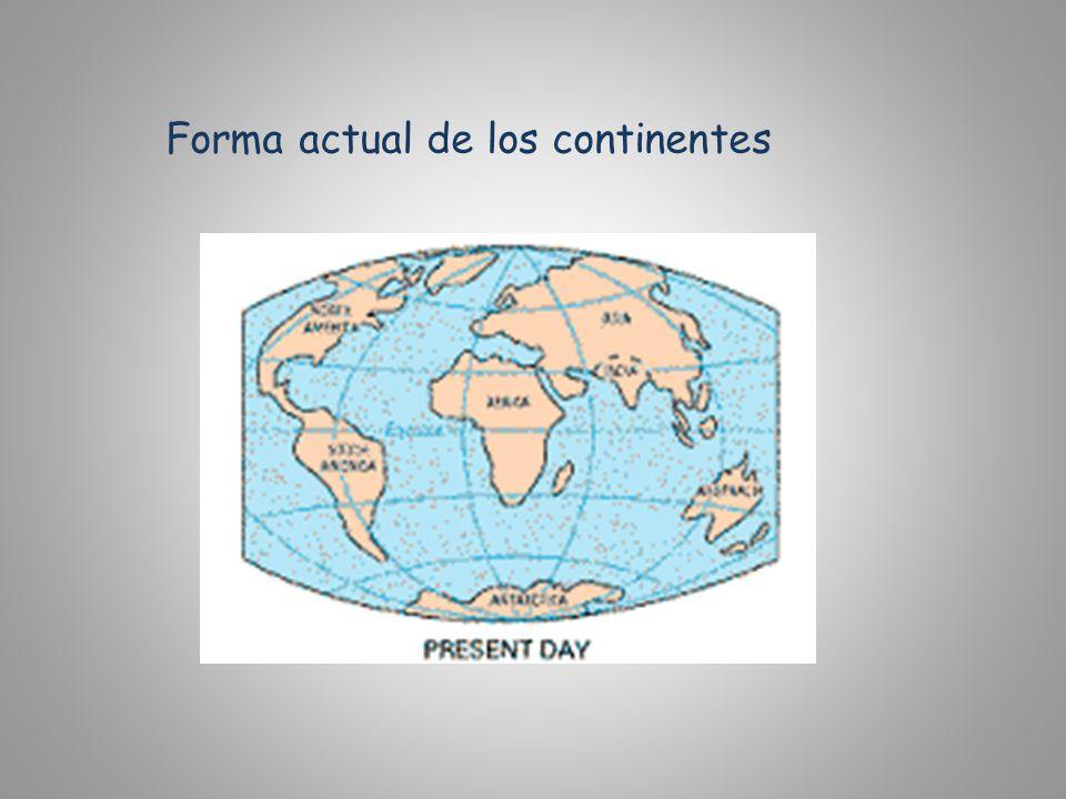 Forma actual de los continentes