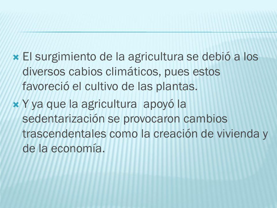El surgimiento de la agricultura se debió a los diversos cabios climáticos, pues estos favoreció el cultivo de las plantas.