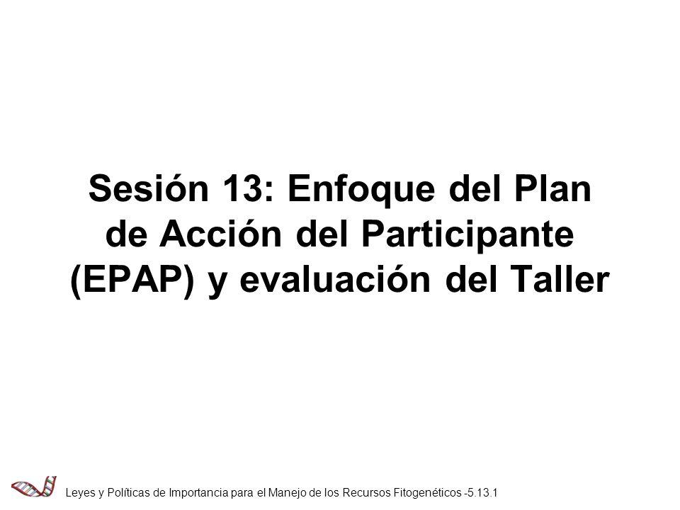 Sesión 13: Enfoque del Plan de Acción del Participante (EPAP) y evaluación del Taller