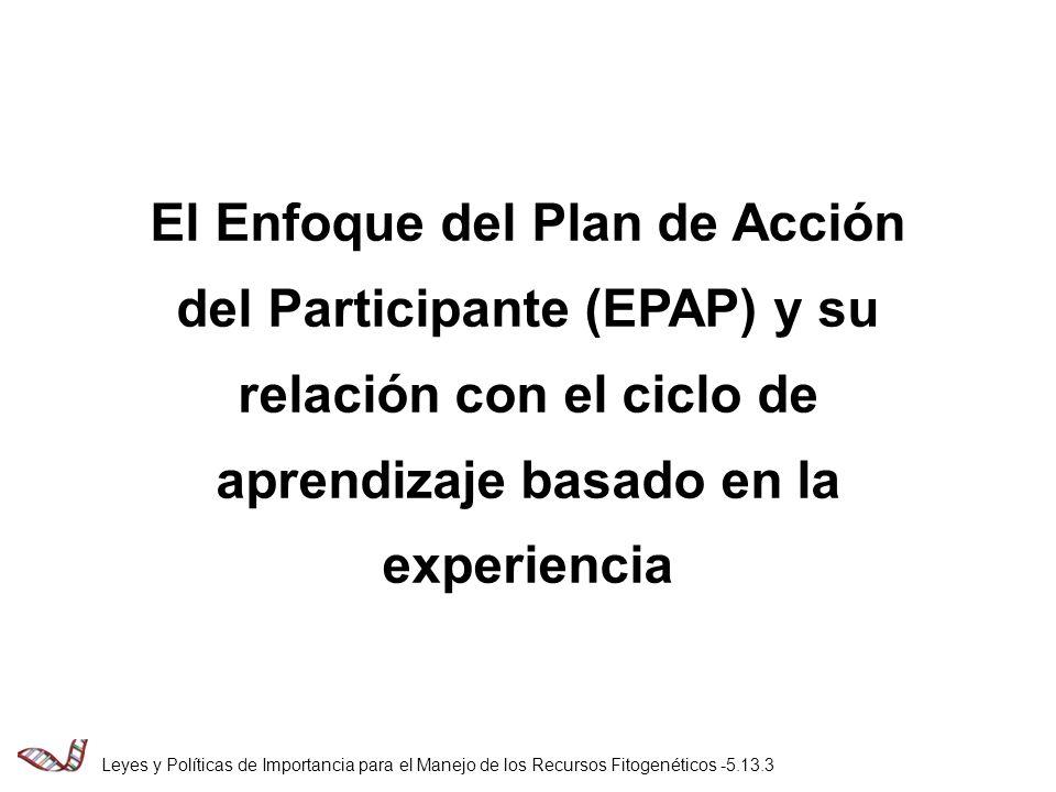 El Enfoque del Plan de Acción del Participante (EPAP) y su relación con el ciclo de aprendizaje basado en la experiencia